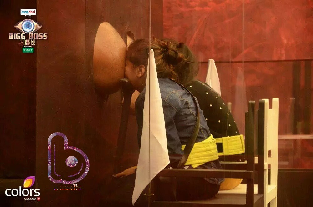 Bigg Boss 9- Day 2 | A new love story in the making?- Roopal